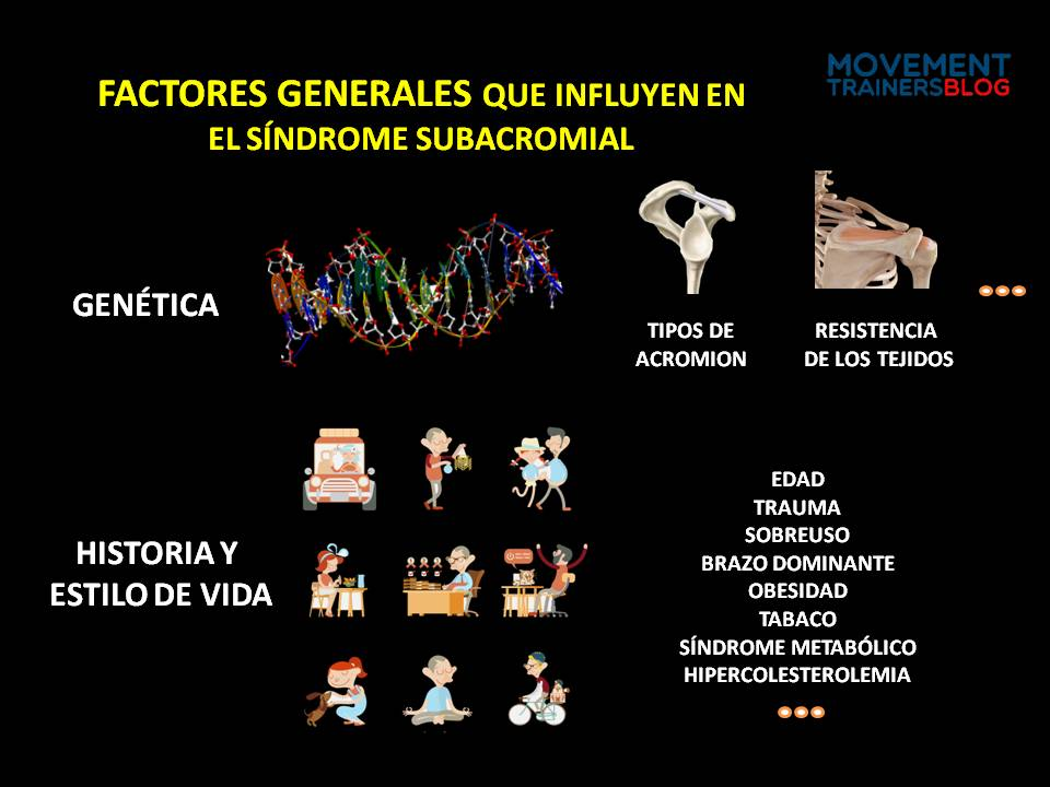 factores-gen-sindrome-subacrom
